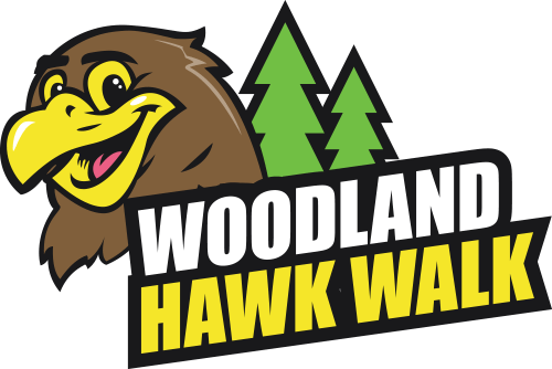 Woodland Hawk Walk